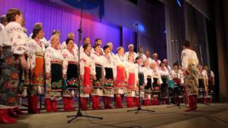 Хор украинской песни Червона калина (РнД). Не для меня (26.05.2013)