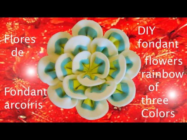 DIY flores de fondant arcoiris de tres colores- fondant flowers rainbow of three colors