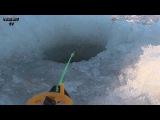 Зимняя рыбалка рыбалка со льда окунь, ёрш, чебак озеро Сунгуль Челябинская область