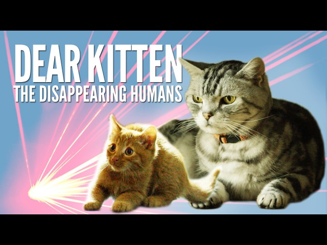 Dear Kitten The Disappearing Humans Purina® Friskies