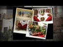 Alojamiento Cabo de Gata - Hostal Restaurante Alba