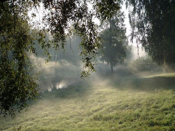 туман-туман