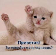 Приветик!