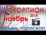 гороскоп  скорпион ноябрь 2014  гороскоп  астрологический прогноз для знака  скорпион на ноябрь 2014