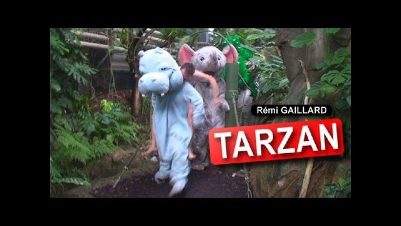 TARZAN REMI GAILLARD смотреть онлайн без регистрации