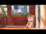 Тайная жизнь домашних любимцев/The Secret Life Of Pets, 2016 - Official Teaser Trailer (HD)