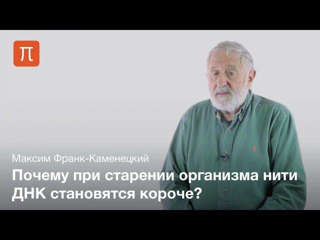 Круто Бостонский универ Репликация ДНК — Максим Франк-Каменецкий