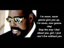 Barry White Never Never Gonna Give You Up Lyrics