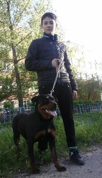 Максим Солтан