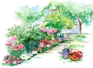 Цветник рядом с домом