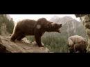 Отрывок с фильма Медведь получивший 9 наград