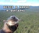 photo from album of Evgeniy Degtyarev, Vladimir - №5