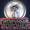 Типичных Воронеж
