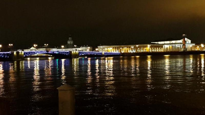 набережная Невы возле Зимнего дворца. Дворцовый мост