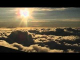 Aphex Twin - Rhubarb