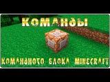 Помощь по командным блокам в Minecraft Самые Частые команды ! .КАК ДАТЬ ЭФФЕКТ СТИВУ !!!!