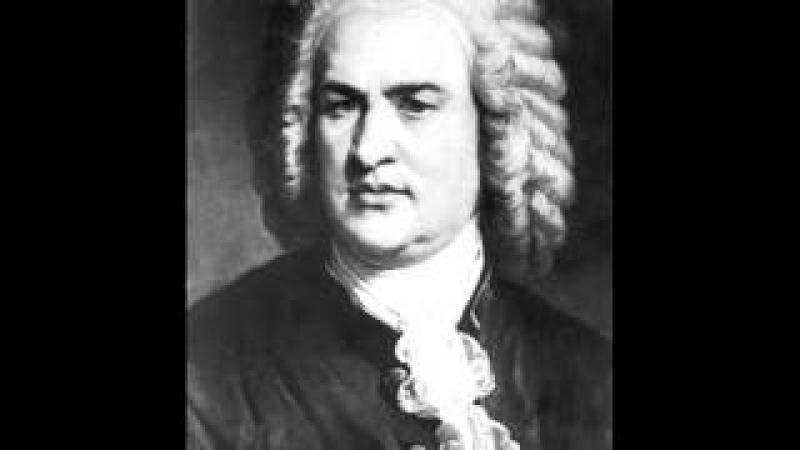 BWV 26 An irdische Schätze