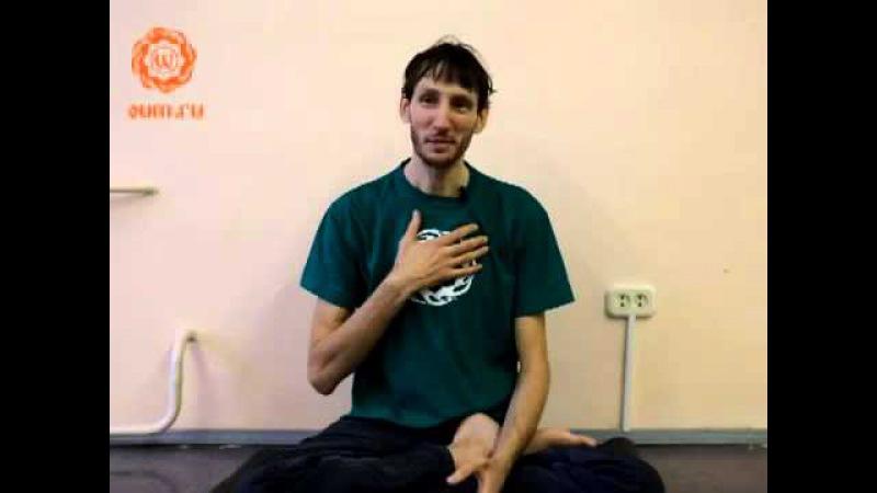 Йога по-взрослому. Лярвы. часть 1