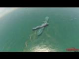 Взгляд на работу в море с высоты радиоуправляемого летательного аппарата