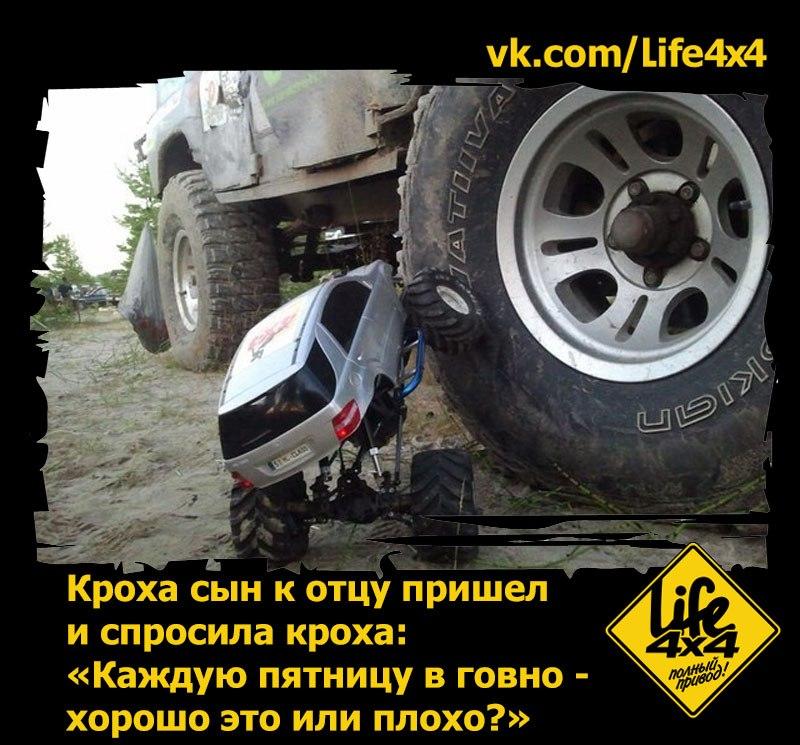 http://cs622928.vk.me/v622928305/31d84/At-wnUORqGQ.jpg