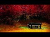 George Winston Autumn ~ Woods (