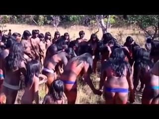Amazon Tribes Xingu Indians Of The Amazon Rainforest