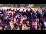 Amazon Tribes Xingu Indians Of The Amazon Rainforest