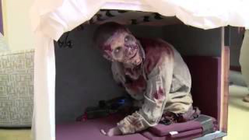 The walking dead prank gone wrong