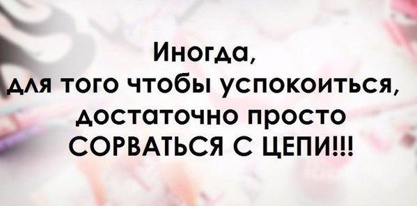http://cs622929.vk.me/v622929477/317e6/0lfisXhNdpk.jpg
