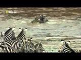 Река Мара-- самая кровавая река мира