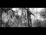 «Объятия змея» (2015): Трейлер / http://www.kinopoisk.ru/film/875336/