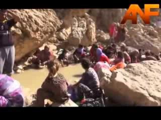 Драматические кадры исхода курдов езидов из Шангала