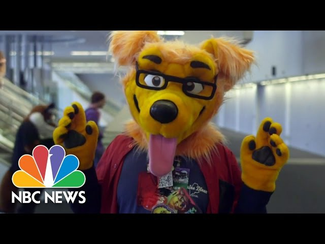 Furries Of Anthrocon Beneath The Fursuit | NBC News