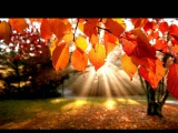 Patricia Kaas - Autumn Leaves