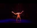 Pole Theatre USA 2015 Professional Champion - Steven Retchless