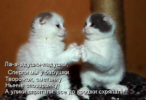 http://cs14102.vk.me/c623116/v623116274/a467/K8KOTAQTaSg.jpg