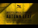 Illumia - Deeley (Original Mix)