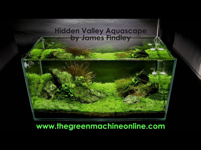 Hidden Valley Aquascape @ The Green Machine