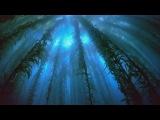 Above &amp Beyond - Home (Original Mix)