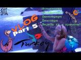 狐 VLOG Antalya part 5. Океанариум Aquarium. Дельфинарий. Поездка в Кемер в DinoPark 狐
