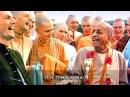 Шрила Прабхупада: Иногда вы называете меня коровой, но я не обижаюсь...