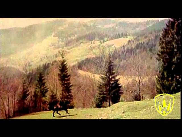 Галичанка Українська пісня