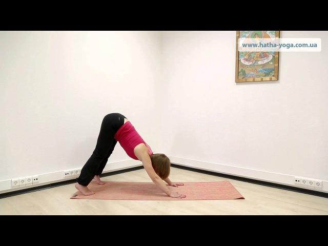 Йога упражнения от варикоза профилактика и терапия варикозного расширения вен Yogalife
