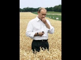 Путин возродит Копное Право