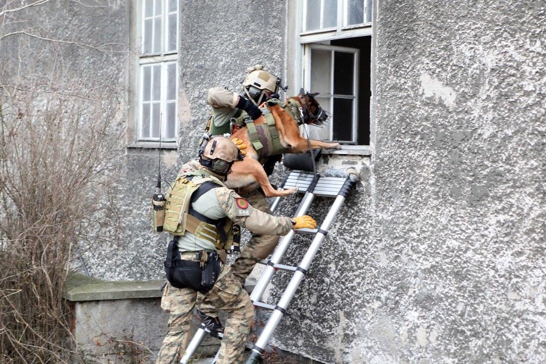 Armée autrichienne / Austrian Armed Forces / Österreichisches Bundesheer  - Page 4 WGeGRFxT5WU
