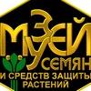 Muzey Semyan