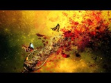 Carbon Based Lifeforms - The Path Full Album HD