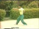 Fujian Luohan Quan San Zheng 3 Straights 福建罗汉拳 三正