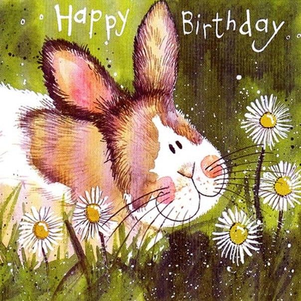 Милое поздравление с днем рождения картинки