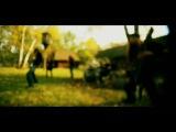 ELUVEITIE - Thousandfold